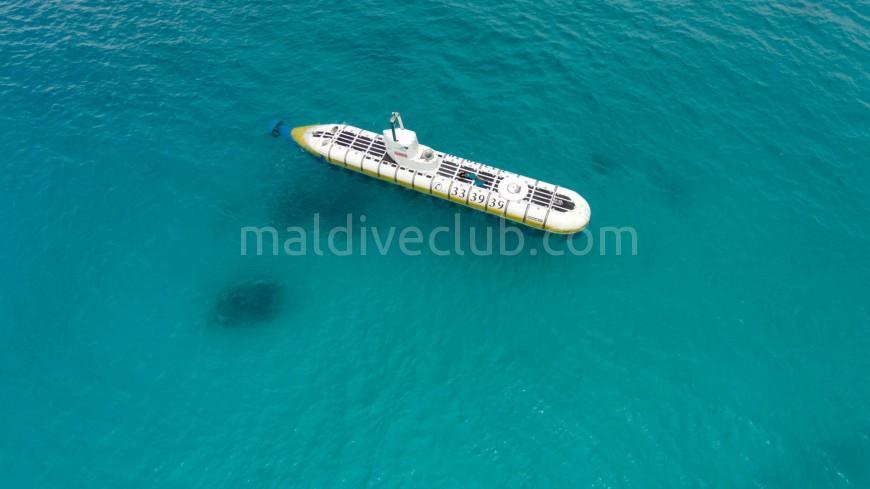 Balina Denizaltı