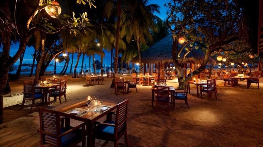 Maldivler'de Karşılama ve Asistanlık