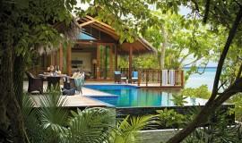 Havuzlu Ağaç Ev Villa