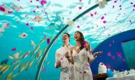 Maldivler'de Evlilik Seromonisi