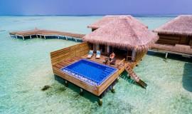 Lagoon Suite Havuzlu